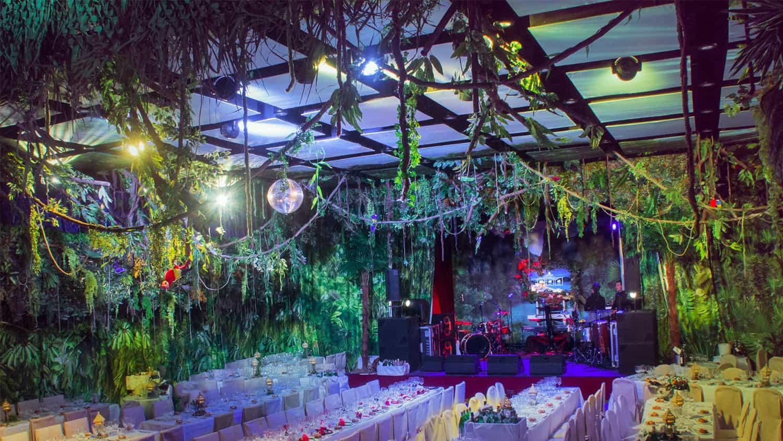 wild_jungle_party 6